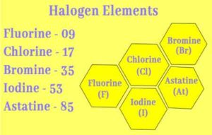 Halogen Elements || Why Halogen are So Reactive || Elemental Nature