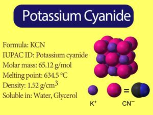 Potassium Cyanide Formula || What does Cyanide do to the body?