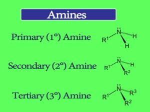 Amine Properties and Uses || What are the different types of amines?