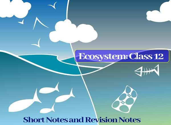 Ecosystem: Class 12