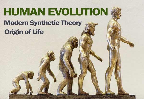Theories of Evolution: class 12