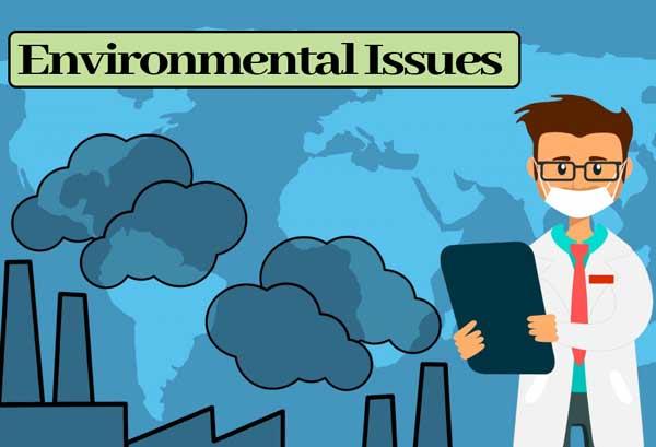 Environmental Issues: Class 12