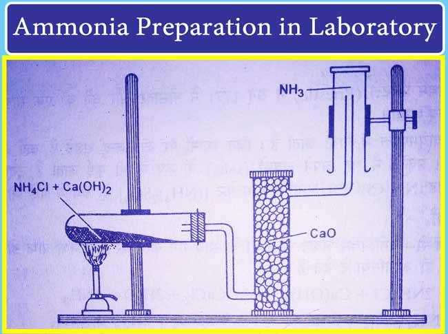 ammonia preparation in laboratory